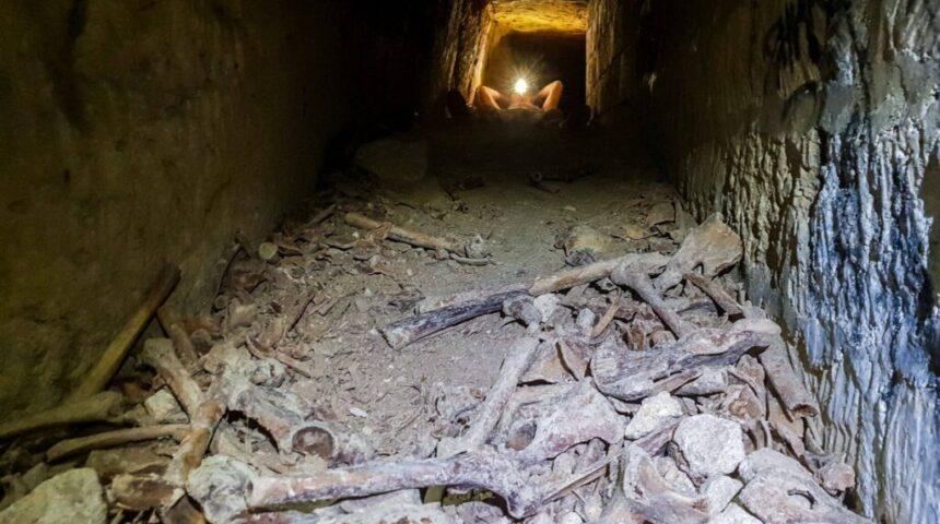 Ossuarium - kości ludzikie katakumby Paryż