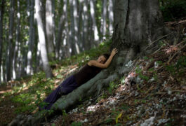 Justyna Stoszek Forest Forever